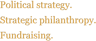 Political strategy.  Strategic philanthropy.  Fundraising.